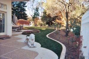 artificial-grass-dogs-sacramento (4)