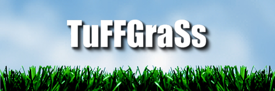 Synthetic grass installer in Sacramento, California