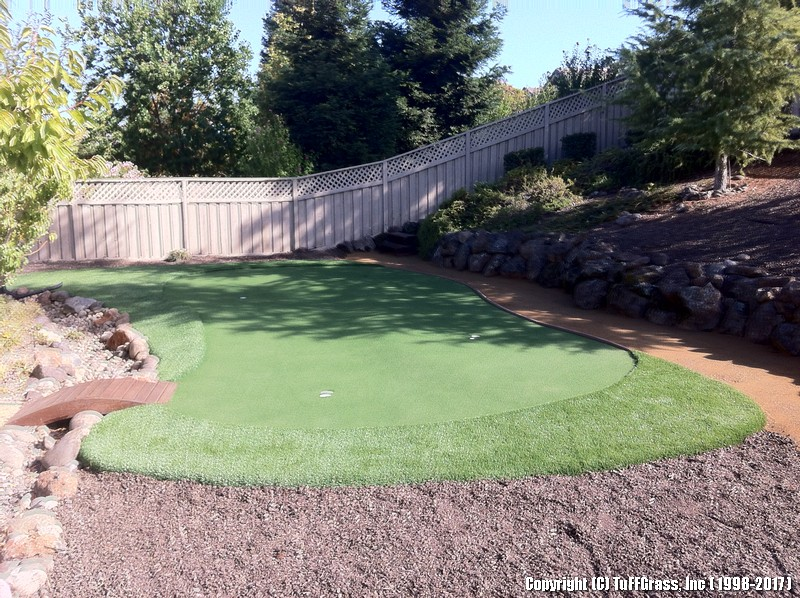 3-CUP-PUTTING-GREEN-BKYARD (2)