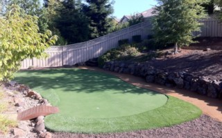 3-CUP-PUTTING-GREEN-BKYARD (3)