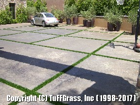 ARTIFICIAL-GRASS-CEMENT-CONCRETE (11)