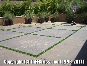 ARTIFICIAL-GRASS-CEMENT-CONCRETE (12)
