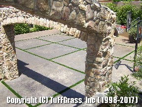 ARTIFICIAL-GRASS-CEMENT-CONCRETE (13)