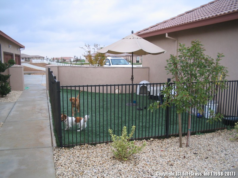 ARTIFICIAL-GRASS-DOGS-YARDS-KENNELS (43)