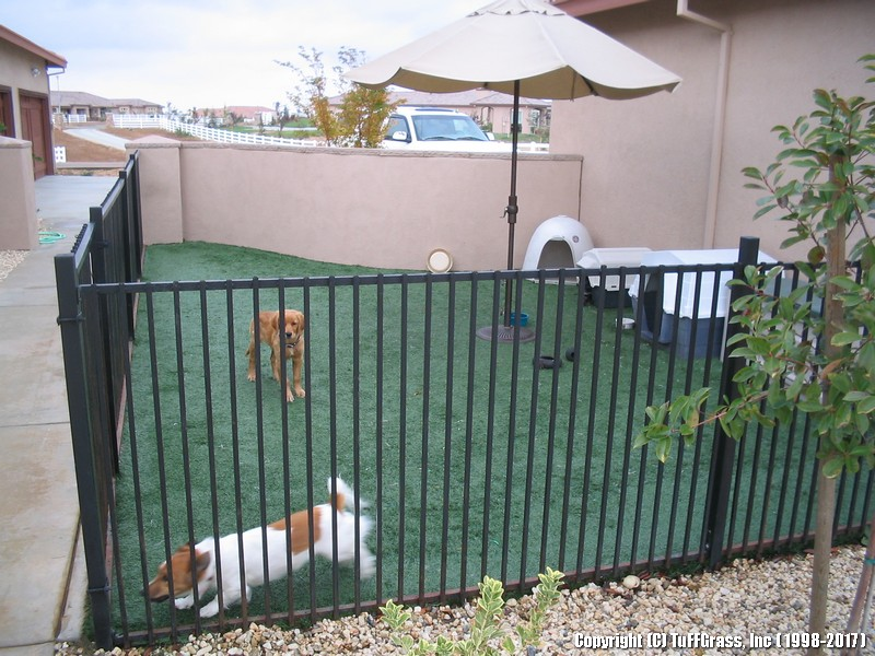 ARTIFICIAL-GRASS-DOGS-YARDS-KENNELS (45)