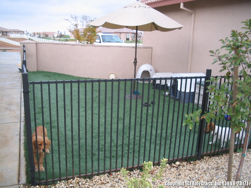 ARTIFICIAL-GRASS-DOGS-YARDS-KENNELS (46)