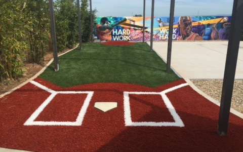 SYNTHETIC GRASS BATTING PRACTICE CAGE