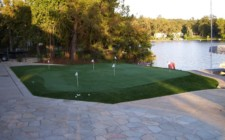 Lakeside View Putting Green, Fringe - 19th Hole & Lawn