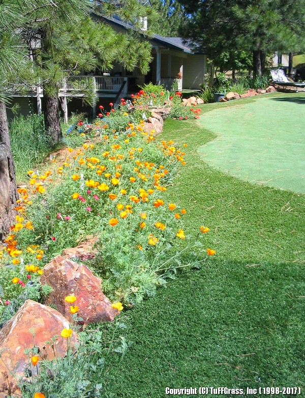 RURAL-PUTT-GREEN-WILDFLOWERS-VERTICAL-300DPI