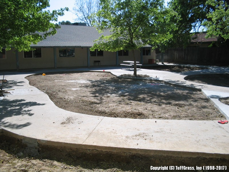 before ARTIFICIAL GRASS AT A DAYCARE CENTER