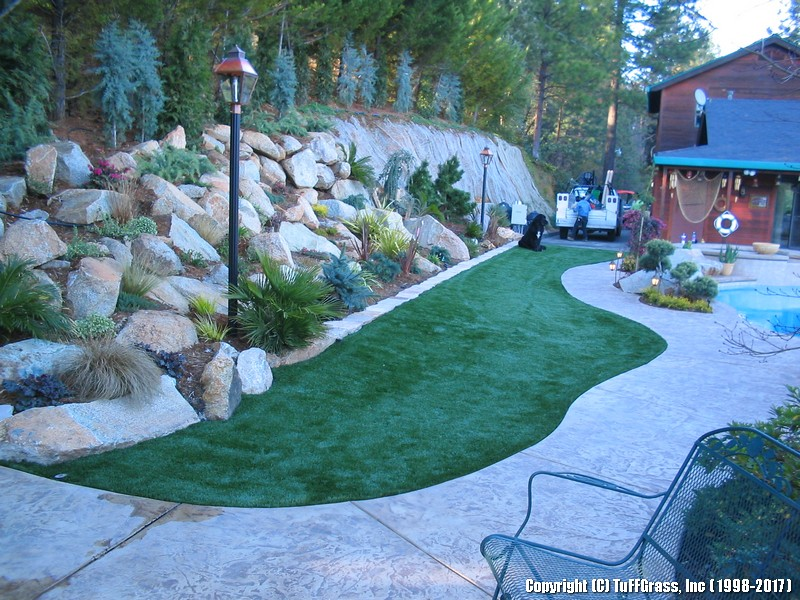 artificial-grass-large-dog-yard-pool-party (3)