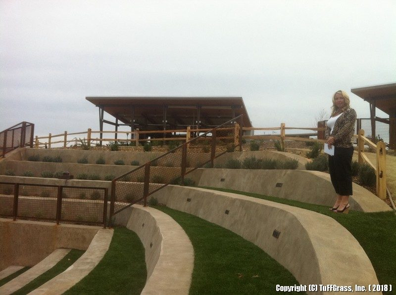 Artificial Turf Used in Outdoor Amphitheater