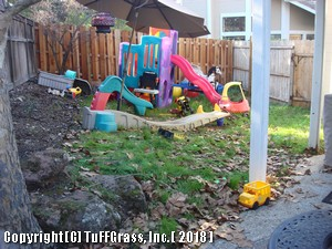ARTIFICIAL -GRASS KIDS PLAY YARD BEFORE