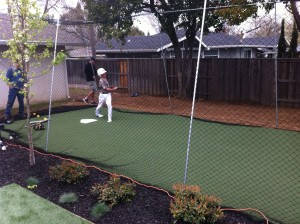 Artficial Turf Grass Batting Cage 06